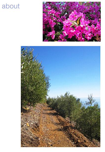 about Rancho del Malibu
